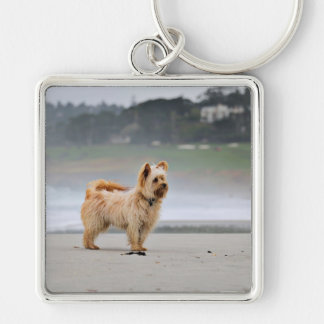 Farris - Lucy - Mixed Breed Key Ring
