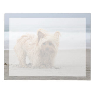 Farris - Lucy - Mixed Breed Notepad