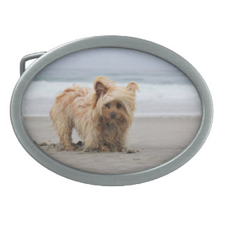Farris - Lucy - Mixed Breed Oval Belt Buckle