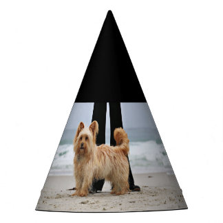 Farris - Lucy - Mixed Breed Party Hat