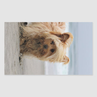 Farris - Lucy - Mixed Breed Rectangular Sticker