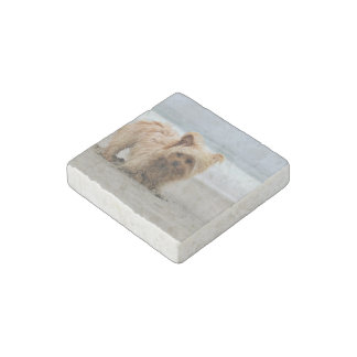 Farris - Lucy - Mixed Breed Stone Magnet