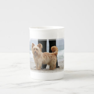 Farris - Lucy - Mixed Breed Tea Cup