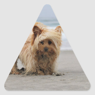 Farris - Lucy - Mixed Breed Triangle Sticker