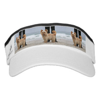 Farris - Lucy - Mixed Breed Visor