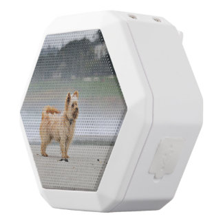 Farris - Lucy - Mixed Breed White Bluetooth Speaker