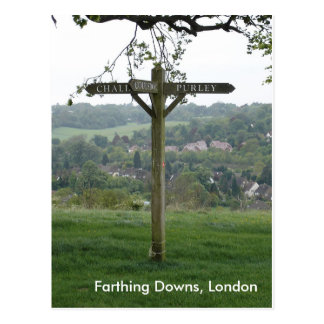 Farthing Downs Signpost, London Postcard