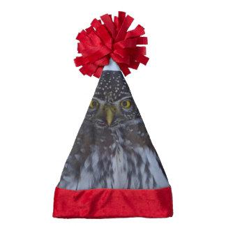 fascinating owl santa hat
