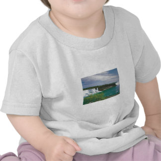 FASHION Clothing Couture: CANADIAN Wild Nature T Shirts