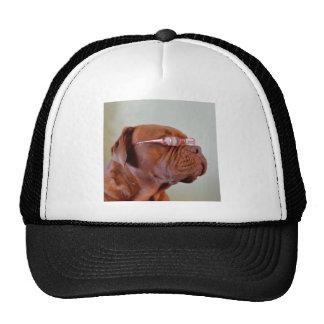 Fashion Dogue de Bordeaux Cap