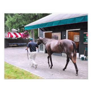 Fasig Tipton Select Sales at Saratoga Photo
