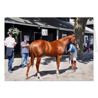 Fasig Tipton Yearling Sales Card