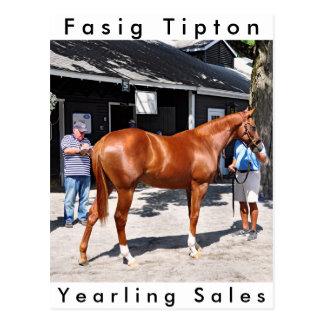 Fasig Tipton Yearling Sales Postcard