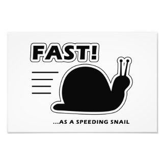 Fast as a speeding snail photograph