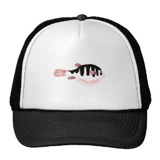 Fat Fish Mesh Hats