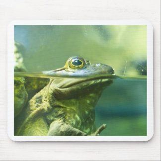 Fat Frog Mouse Pad