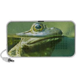 Fat Frog Mini Speakers