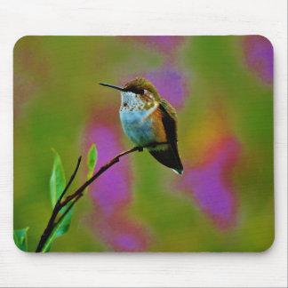 Fat little Hummingbird Mousepads