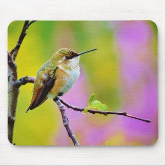 Fat little  Hummingbird Mouse Pads
