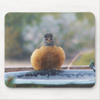 Fat Robin Mouse Pad