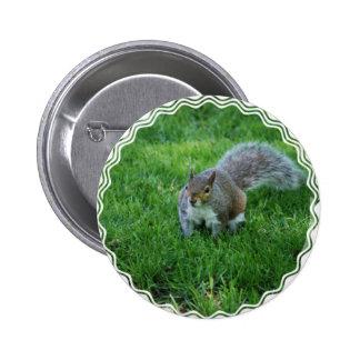 Fat Squirrel  Button
