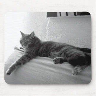 Fat Tabby Cat Mousepad