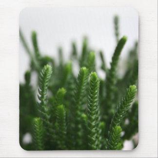 fatfatin Green Grass Photo Mousepad