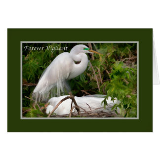 Father's Day, Nesting Great Egrets Card