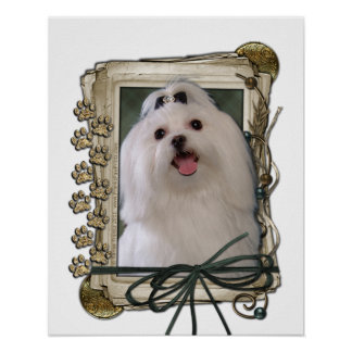 Fathers Day - Stone Paws - Maltese Posters