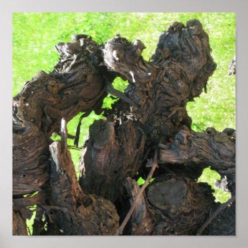 Fats domino grape vine posters