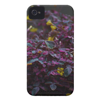 FAUNA and FLORA iPhone 4 Cover