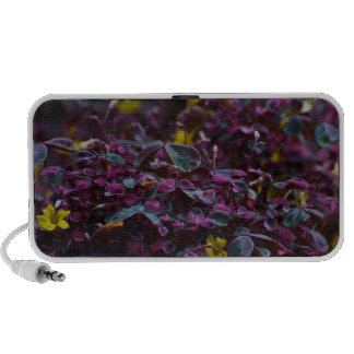FAUNA and FLORA Laptop Speakers