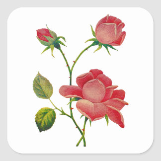 Faux Embroidered Deep Pink Roses Square Sticker