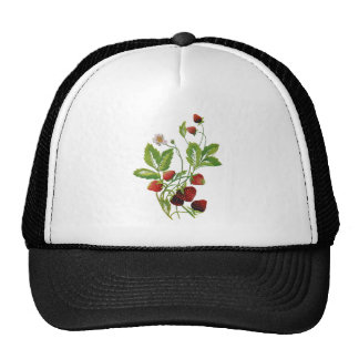 Faux Embroidered Fresh Strawberries Hat