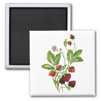 Faux Embroidered Fresh Strawberries Square Magnet