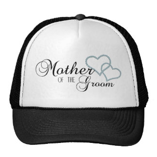 Faux Show Mother of the Groom Mesh Hat