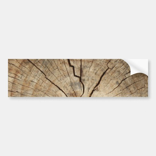 Faux Tree Rings Background Bumper Stickers