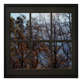 Faux Window Illusion Poster 24x24 Black