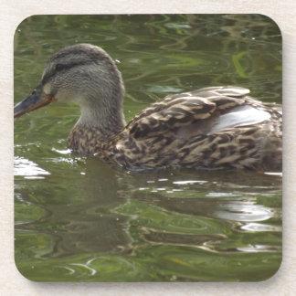 Fav little duckie drink coaster