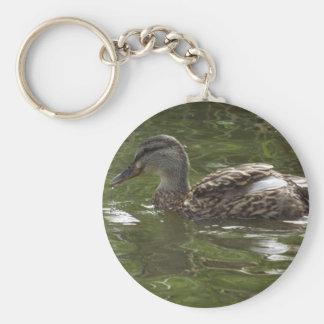 Fav little duckie key chain