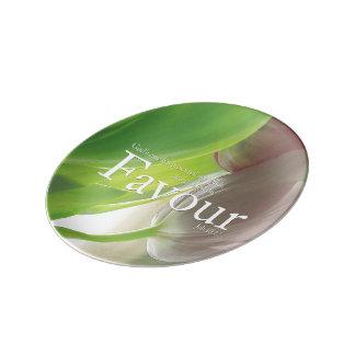 Favour Porcelain Collectors Plate Porcelain Plates