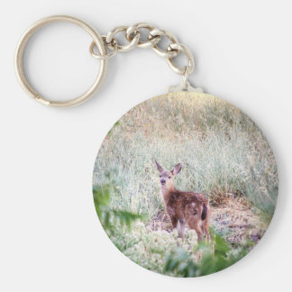 Fawn Basic Round Button Key Ring