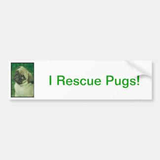 Fawn Chinese Pug Bumper Sticker