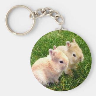 Fawn Dwarf Bunny Rabbits, Key Ring