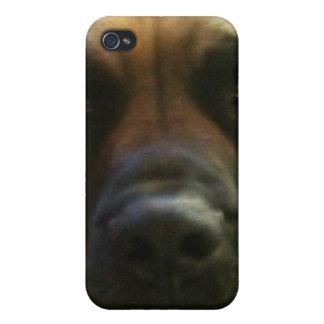 Fawn Mastiff Case iPhone 4 Case