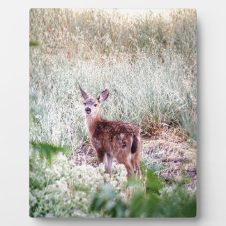 Fawn Plaque