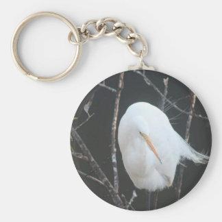 FB_IMG_1481504110273 (1) Florida Bird Key Ring
