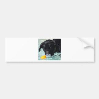 FB_IMG_1481505422550 Black Lab Bumper Sticker