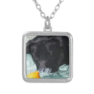 FB_IMG_1481505422550 Black Lab Silver Plated Necklace