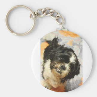 FB_IMG_1481505521015 Shitzu dog Basic Round Button Key Ring